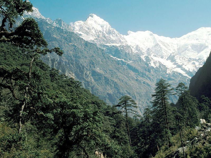 Alpandino Visit The Alpine Himalayas Langtang Nepal